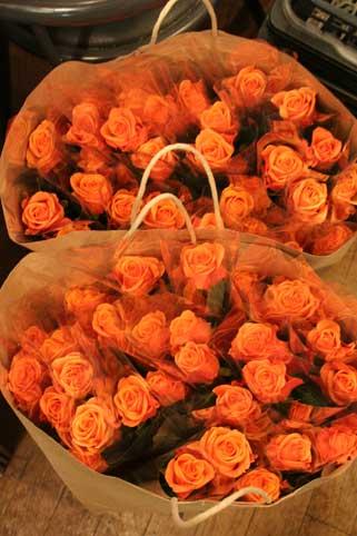 花ギフト|フラワーギフト|誕生日 花|カノシェ話題|スタンド花|ウエディングブーケ|花束|花屋|バラ1本