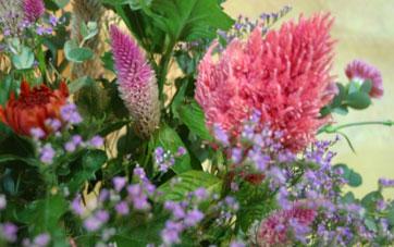 花ギフト|フラワーギフト|誕生日 花|カノシェ話題|スタンド花|ウエディングブーケ|花束|花屋|ピンクけいと