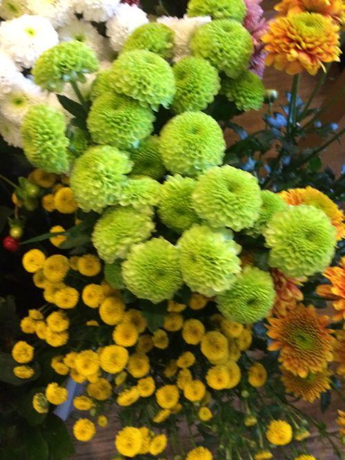 花ギフト|フラワーギフト|誕生日 花|カノシェ話題|スタンド花|ウエディングブーケ|花束|花屋|IMG_3941