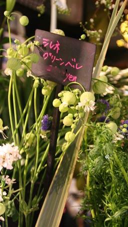 花ギフト|フラワーギフト|誕生日 花|カノシェ話題|スタンド花|ウエディングブーケ|花束|花屋|IMG_6168