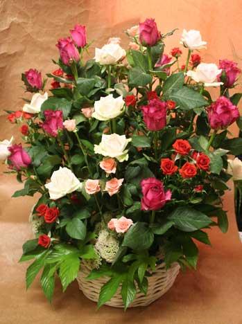 花ギフト|フラワーギフト|誕生日 花|カノシェ話題|スタンド花|ウエディングブーケ|花束|花屋|バラいっぱい