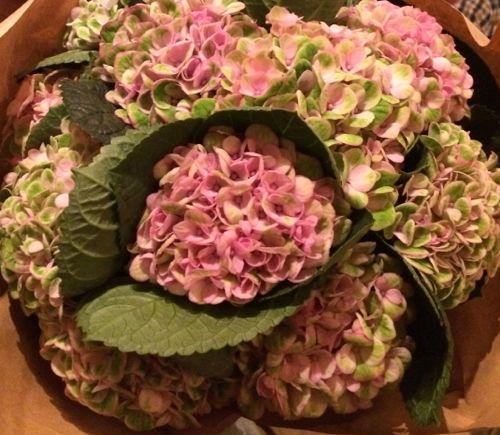 花ギフト|フラワーギフト|誕生日 花|カノシェ話題|スタンド花|ウエディングブーケ|花束|花屋|IMG_5502
