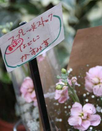 花ギフト|フラワーギフト|誕生日 花|カノシェ話題|スタンド花|ウエディングブーケ|花束|花屋|札