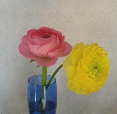 花ギフト|フラワーギフト|誕生日 花|カノシェ話題|スタンド花|ウエディングブーケ|花束|花屋|ラナンキュラス2