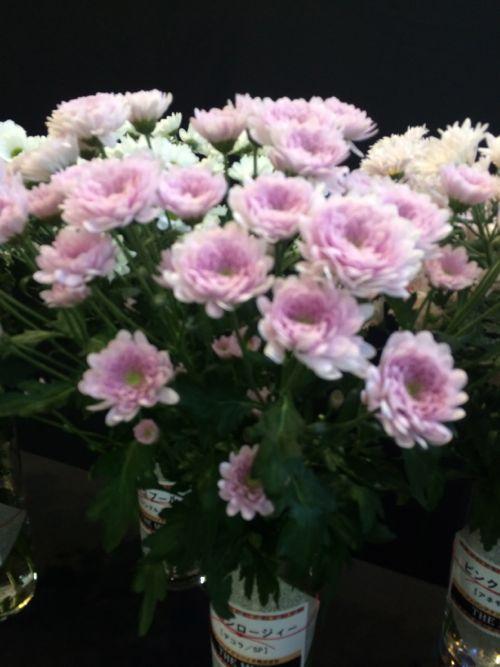花ギフト|フラワーギフト|誕生日 花|カノシェ話題|スタンド花|ウエディングブーケ|花束|花屋|IMG_3159
