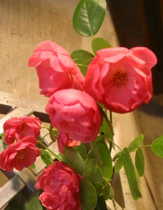 花ギフト|フラワーギフト|誕生日 花|カノシェ話題|スタンド花|ウエディングブーケ|花束|花屋|アンジェラ