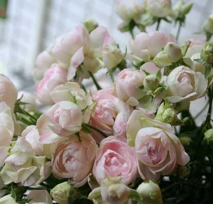 花ギフト|フラワーギフト|誕生日 花|カノシェ話題|スタンド花|ウエディングブーケ|花束|花屋|オールドファンタジー
