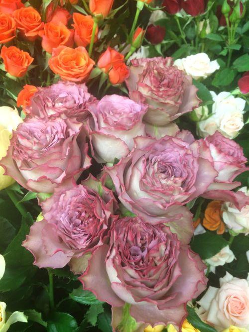 花ギフト|フラワーギフト|誕生日 花|カノシェ話題|スタンド花|ウエディングブーケ|花束|花屋|IMG_8099