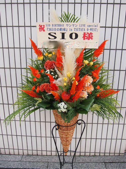 スタンド花 スタンドフラワー フラスタ カノシェ65455