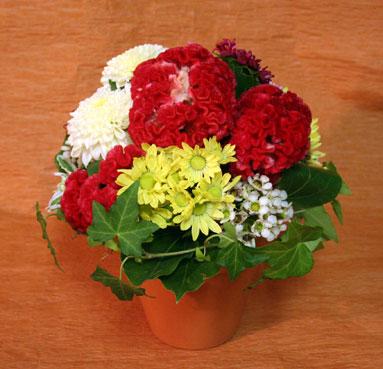 花ギフト|フラワーギフト|誕生日 花|カノシェ話題|スタンド花|ウエディングブーケ|花束|花屋|hanaechan