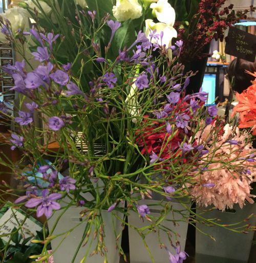 花ギフト|フラワーギフト|誕生日 花|カノシェ話題|スタンド花|ウエディングブーケ|花束|花屋|IMG_7763