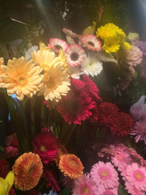 花ギフト|フラワーギフト|誕生日 花|カノシェ話題|スタンド花|ウエディングブーケ|花束|花屋|IMG_9019
