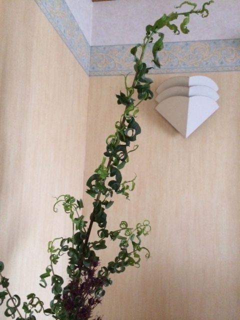 花ギフト|フラワーギフト|誕生日 花|カノシェ話題|スタンド花|ウエディングブーケ|花束|花屋|写真 1(42)