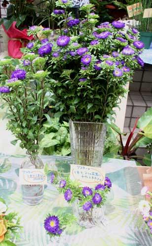 花ギフト|フラワーギフト|誕生日 花|カノシェ話題|スタンド花|ウエディングブーケ|花束|花屋|アスター