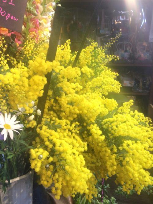 花ギフト|フラワーギフト|誕生日 花|カノシェ話題|スタンド花|ウエディングブーケ|花束|花屋|IMG_9022
