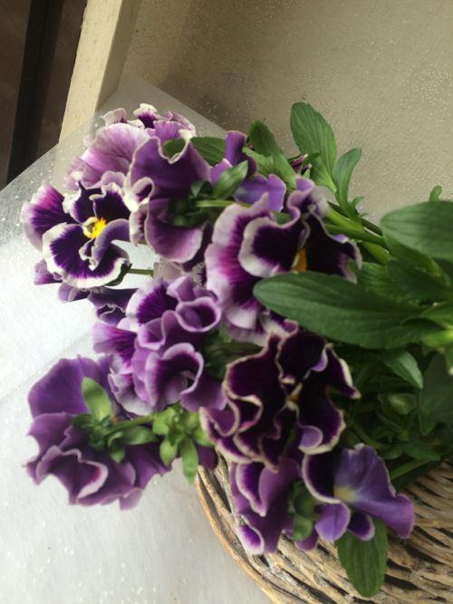 花ギフト|フラワーギフト|誕生日 花|カノシェ話題|スタンド花|ウエディングブーケ|花束|花屋|IMG_9916