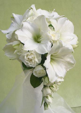 花ギフト|フラワーギフト|誕生日 花|カノシェ話題|スタンド花|ウエディングブーケ|花束|花屋|アマリリス
