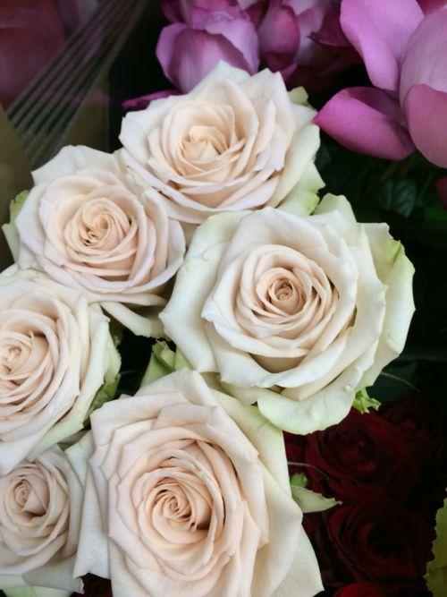 花ギフト|フラワーギフト|誕生日 花|カノシェ話題|スタンド花|ウエディングブーケ|花束|花屋|IMG_4265