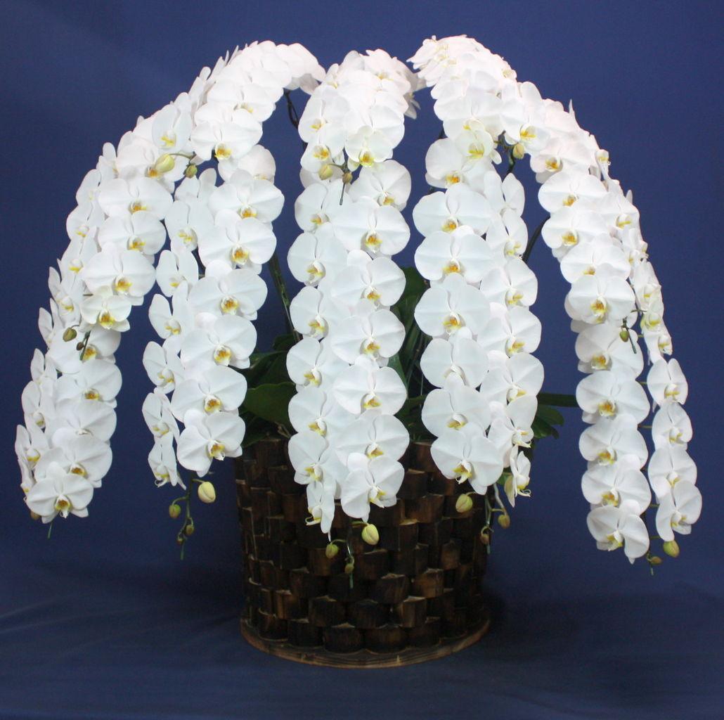 花ギフト|フラワーギフト|誕生日 花|カノシェ話題|スタンド花|ウエディングブーケ|花束|花屋|10F