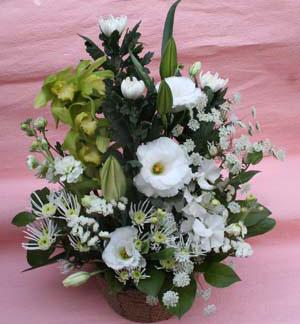 花ギフト|フラワーギフト|誕生日 花|カノシェ話題|スタンド花|ウエディングブーケ|花束|花屋|白りえ