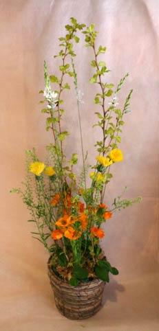 花ギフト フラワーギフト 誕生日 花 カノシェ話題 スタンド花 ウエディングブーケ 花束 花屋 IMG_7303