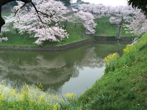 花ギフト|フラワーギフト|誕生日 花|カノシェ話題|スタンド花|ウエディングブーケ|花束|花屋|IMG_7676