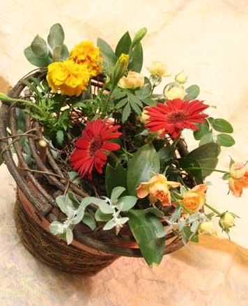 花ギフト|フラワーギフト|誕生日 花|カノシェ話題|スタンド花|ウエディングブーケ|花束|花屋|たなかあやこさん