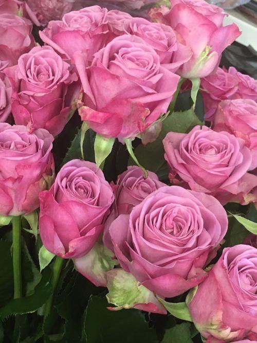 花ギフト|フラワーギフト|誕生日 花|カノシェ話題|スタンド花|ウエディングブーケ|花束|花屋|IMG_0981