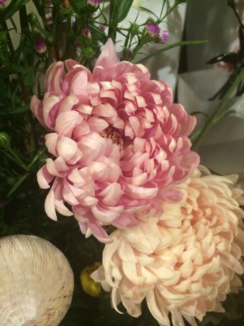 花ギフト|フラワーギフト|誕生日 花|カノシェ話題|スタンド花|ウエディングブーケ|花束|花屋|IMG_7773