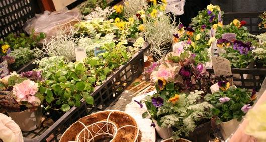 花ギフト|フラワーギフト|誕生日 花|カノシェ話題|スタンド花|ウエディングブーケ|花束|花屋|IMG_5348