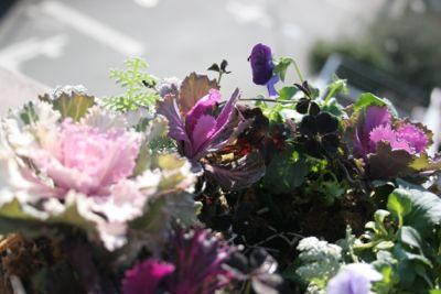 花ギフト|フラワーギフト|誕生日 花|カノシェ話題|スタンド花|ウエディングブーケ|花束|花屋|IMG_6604