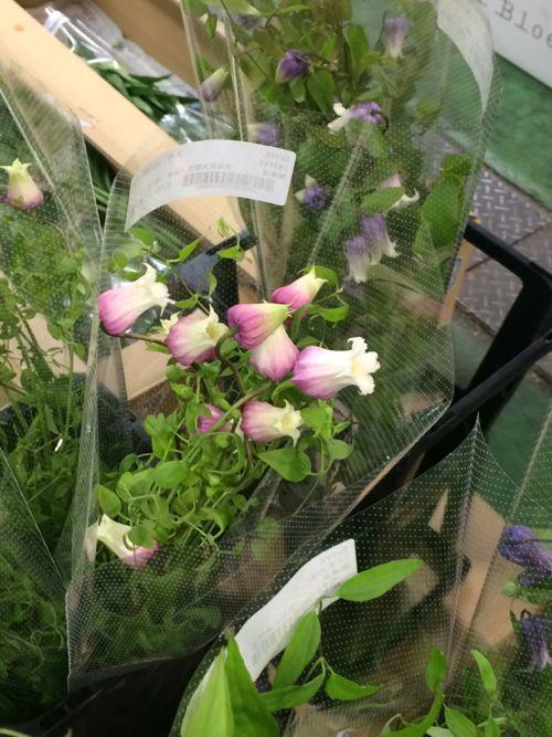 花ギフト|フラワーギフト|誕生日 花|カノシェ話題|スタンド花|ウエディングブーケ|花束|花屋|IMG_6856