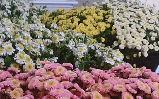 花ギフト|フラワーギフト|誕生日 花|カノシェ話題|スタンド花|ウエディングブーケ|花束|花屋|matori