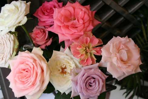 花ギフト|フラワーギフト|誕生日 花|カノシェ話題|スタンド花|ウエディングブーケ|花束|花屋|ピンク