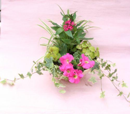 花ギフト|フラワーギフト|誕生日 花|カノシェ話題|スタンド花|ウエディングブーケ|花束|花屋|IMG_0308