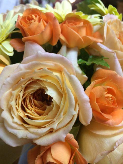 花ギフト|フラワーギフト|誕生日 花|カノシェ話題|スタンド花|ウエディングブーケ|花束|花屋|IMG_7207