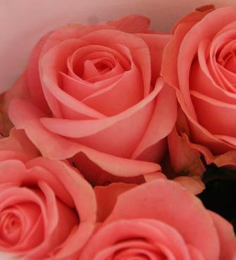 花ギフト|フラワーギフト|誕生日 花|カノシェ話題|スタンド花|ウエディングブーケ|花束|花屋|島さん2