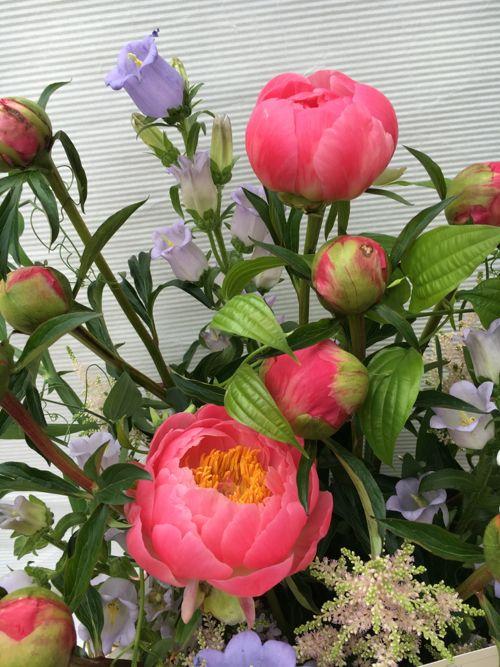 花ギフト|フラワーギフト|誕生日 花|カノシェ話題|スタンド花|ウエディングブーケ|花束|花屋|IMG_0840