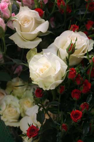 花ギフト|フラワーギフト|誕生日 花|カノシェ話題|スタンド花|ウエディングブーケ|花束|花屋|イングリッシュアイズ
