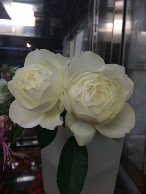 花ギフト|フラワーギフト|誕生日 花|カノシェ話題|スタンド花|ウエディングブーケ|花束|花屋|IMG_7683