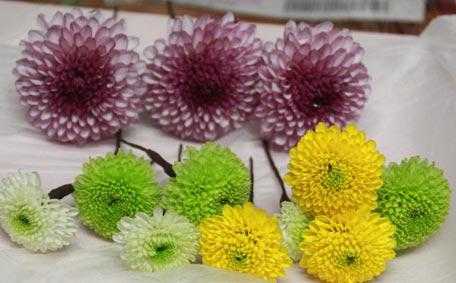 花ギフト|フラワーギフト|誕生日 花|カノシェ話題|スタンド花|ウエディングブーケ|花束|花屋|74-4