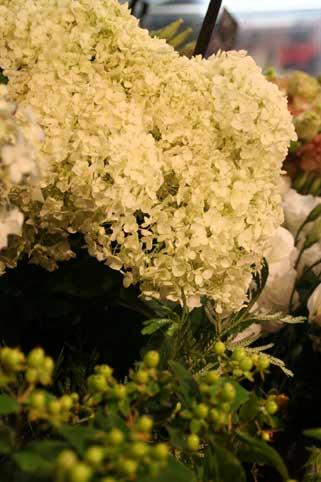 花ギフト|フラワーギフト|誕生日 花|カノシェ話題|スタンド花|ウエディングブーケ|花束|花屋|アナベル