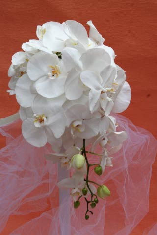 花ギフト|フラワーギフト|誕生日 花|カノシェ話題|スタンド花|ウエディングブーケ|花束|花屋|胡蝶蘭椿山荘