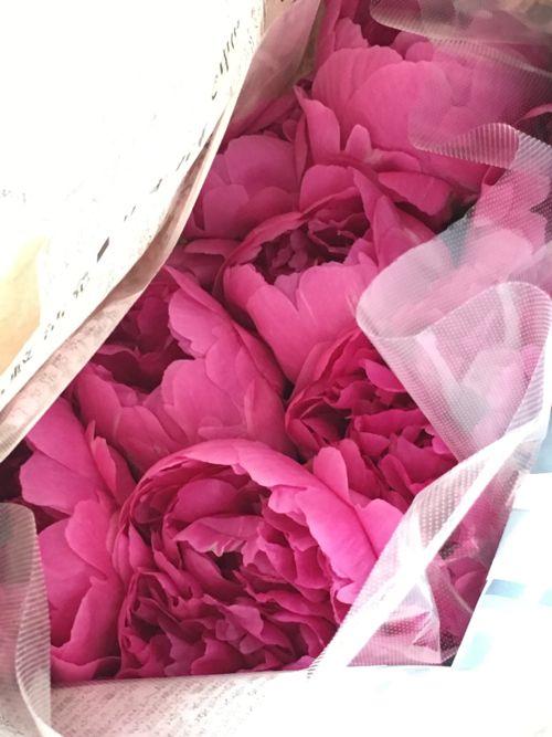 花ギフト|フラワーギフト|誕生日 花|カノシェ話題|スタンド花|ウエディングブーケ|花束|花屋|IMG_1462