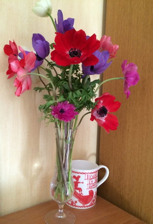 花ギフト|フラワーギフト|誕生日 花|カノシェ話題|スタンド花|ウエディングブーケ|花束|花屋|IMG_8737