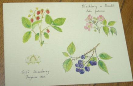 花ギフト フラワーギフト 誕生日 花 カノシェ話題 スタンド花 ウエディングブーケ 花束 花屋 カード