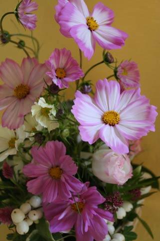 花ギフト|フラワーギフト|誕生日 花|カノシェ話題|スタンド花|ウエディングブーケ|花束|花屋|IMG_9857