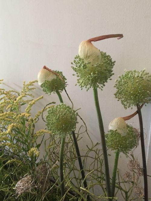 花ギフト|フラワーギフト|誕生日 花|カノシェ話題|スタンド花|ウエディングブーケ|花束|花屋|IMG_5570