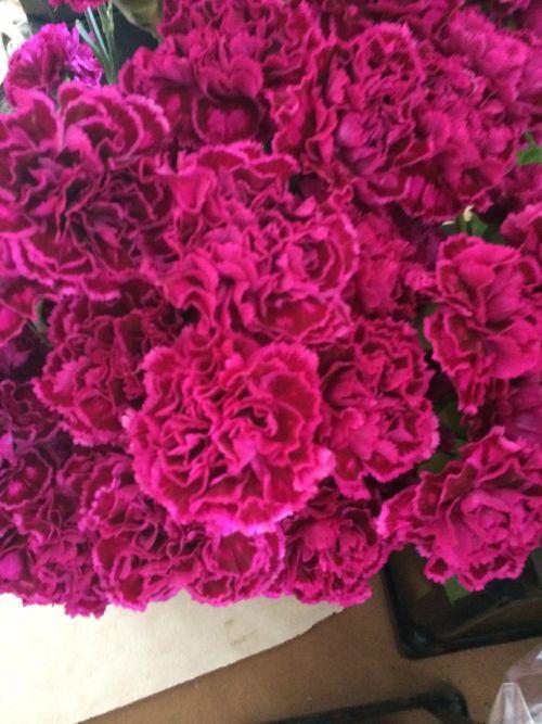 花ギフト|フラワーギフト|誕生日 花|カノシェ話題|スタンド花|ウエディングブーケ|花束|花屋|IMG_5060