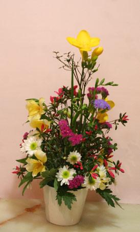 花ギフト|フラワーギフト|誕生日 花|カノシェ話題|スタンド花|ウエディングブーケ|花束|花屋|223